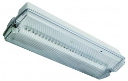 REELTECH Emergency LED Bulkhead